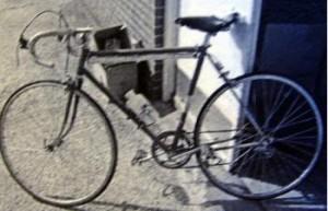 Datidens cykel.